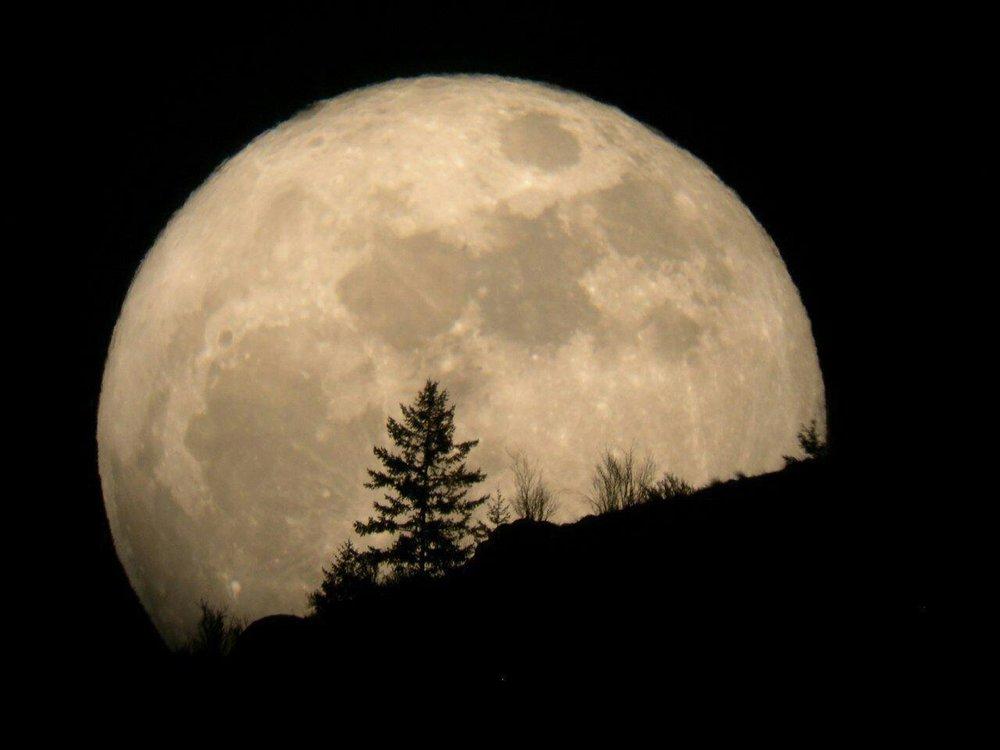 """امشب شاهد ماه در وضعیت """"حضیض زمینی"""" و سیارک """"Pallas 2"""" باشید"""