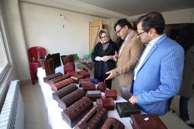 دیدار مشاور و معاون شهردار اصفهان به همراه اساتید دانشگاه کالیفرنیا از خیریه یاوران معلولی