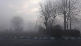 فریدن در مه فرو رفت+تصاویر