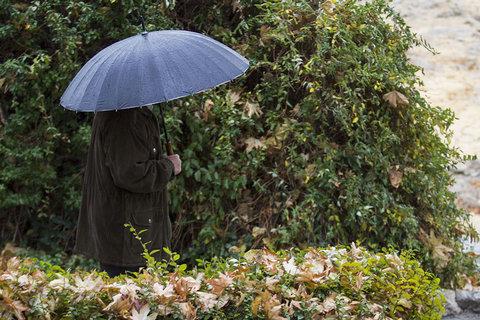 ثبت یکصد میلیمتر بارندگی در دهاقان