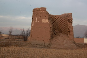 """باغ """"برجی ریز""""؛ زیر تیغ تخریب"""