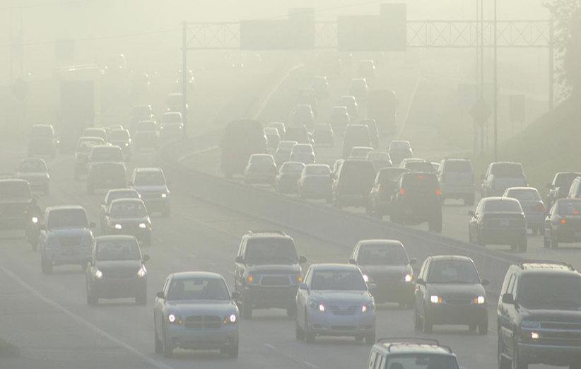 شناسایی بیش از ۱۷ هزار تخلف زیستمحیطی در مشهد