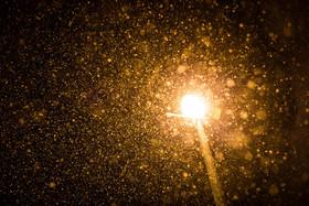 بارش برف زمستانی -نجف آباد