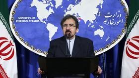 واکنش سخنگوی وزارت خارجه به خبر بروز مشکل در سوخت رسانی به هواپیمای حامل ظریف