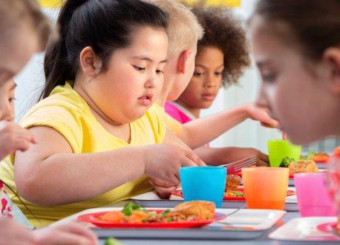 عوامل بروز چاقی در بین کودکان کدامند؟