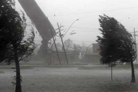 واژگونی ۷ تابلوی تبلیغاتی و قطع ۲۰ اصله درخت بر اثر باد شدید/فردا سرعت باد بیشتر میشود