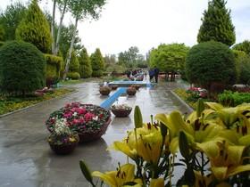 برگزاری «جشنواره لاله ها»  در باغ گلها