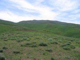 سال آینده تولید مراتع اصفهان کاهش مییابد