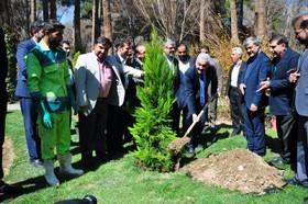 درخت دوستی شهرهای اصفهان و موستار کاشته شد
