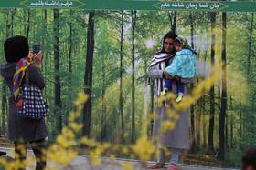 ویژه برنامه روز  درخت کاری در گذر فرهنگی چهارباغ