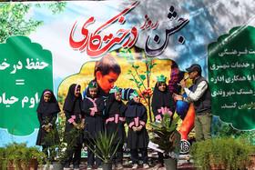 جشن روز درختکاری در بوستان شاهد رهنان