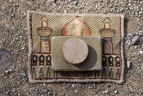 اقامه نماز باران - گز برخوار