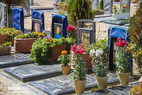 توزیع گل و سبزه در آرامستانهای مشهد
