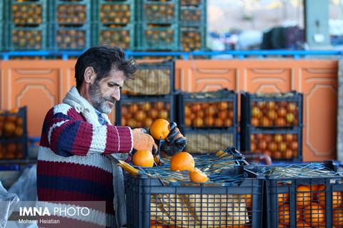 قیمت میوه و ترهبار در بازار امروز ۱۵ آبانماه+ جدول