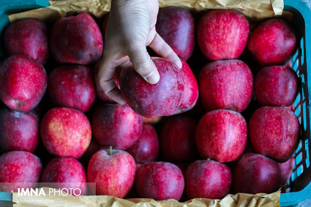 قیمت میوه و ترهبار در بازارهای کوثر امروز ۲۸ مهرماه+ جدول