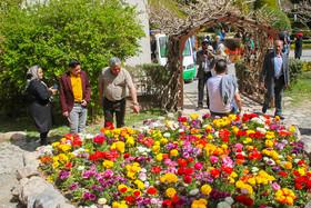 باغ گلها؛ میزبان جشن گل رز محمدی