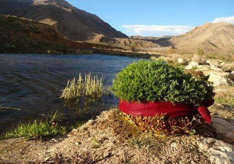 سیزده به در؛ فرصتی برای گره زدن سبزه زندگی به طبیعت