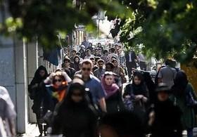 شیراز برای حضور پررنگتر زنان آماده شود