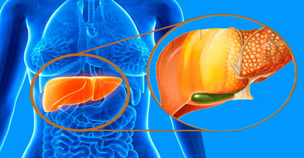 رژیم غذایی مدیترانهای قاتل کبد چرب/خواص اسید فولیک