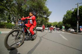 دوچرخهسواری در هیاهوی خودروها