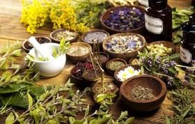 اثربخشی گیاهان برای بیماران دیابتی