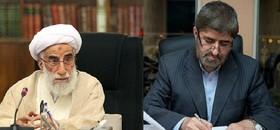 انتقاد «مطهری» از قطعنامه پنجمین اجلاس خبرگان