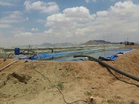۲ کودک در استخر آب کشاورزی غرق شدند