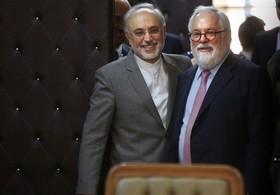 کمیسیونر انرژی اروپا به ایران تضمین می دهد