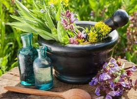 گیاهان دارویی بدون عارضه نیستند