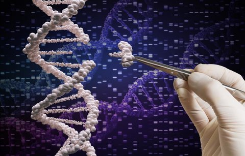 مداخله ژنتیکی