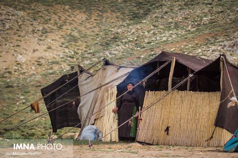 هر چادر قشقایی یک کارگاه تولیدی است