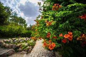 باغ گل های اصفهان_به مناسبت روز جهانی گل