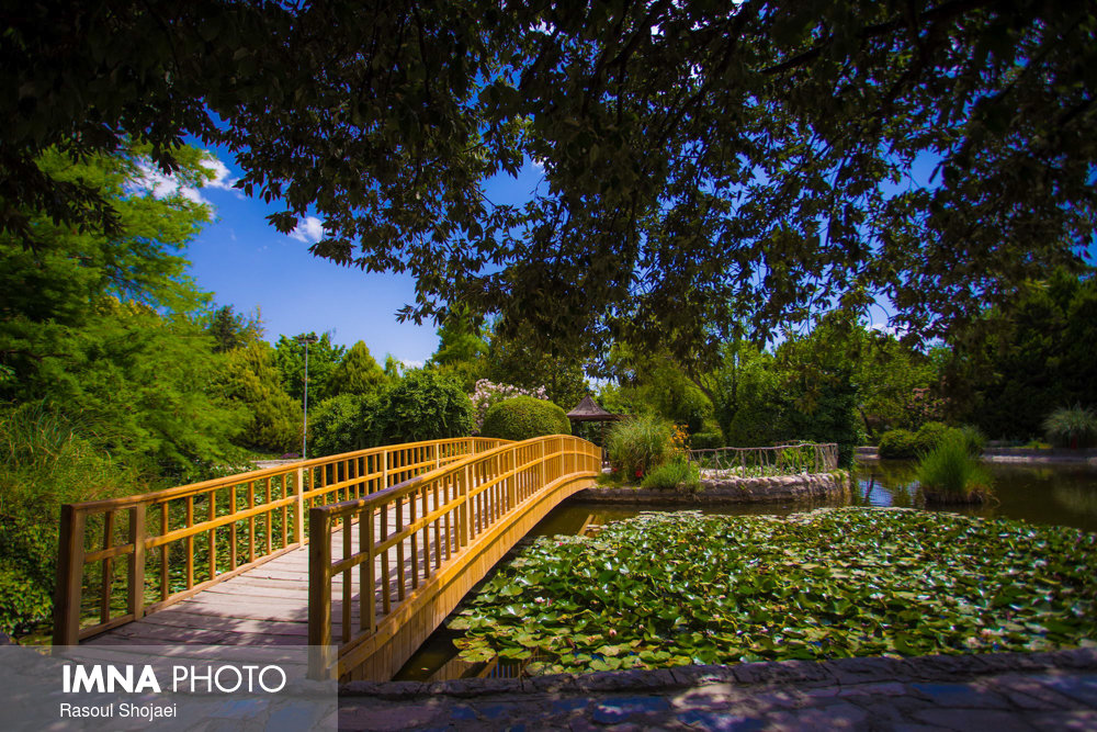 Isfahan remains green in summer