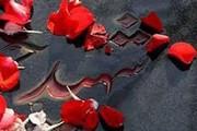 مبادا خون شهیدان با سازشکاری هدر برود
