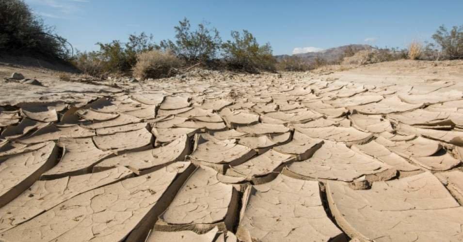 امسال کم بارشترین سال در ۱۵ سال اخیر بوده است/اکثر مناطق درگیر خشکسالی شدید