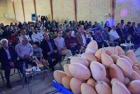 برگزاری جشنواره خربزه سینی در برخوار