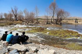 عضو صنف کشاورزان لنجان: چگونه ما را به برداشت غیرمجاز آب محکوم می کنید؟