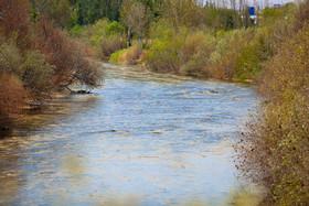 پایان آب رسانی به باغات غرب اصفهان