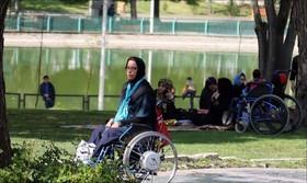 افتتاح پارک ویژه معلولین تا پایان امسال