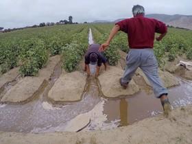 شرایط زندگی کشاورز خوب نیست