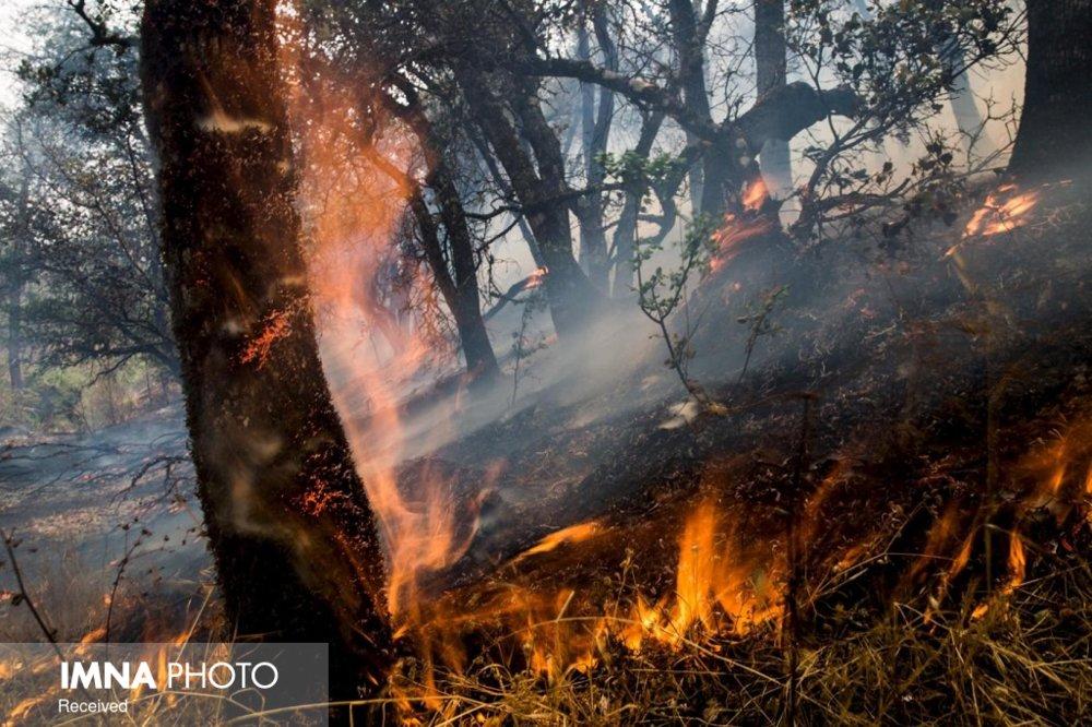 خانه ساریاصلانی در آتش سوخت/زحمت یک سال کشاورزان بادامک خاکستر شد