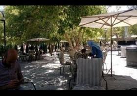 افتتاح نخستین رستوران ارگانیک