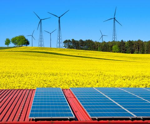 انرژیهای تجدیدپذیر به محبوبترین سوخت تولید برق تبدیل میشود