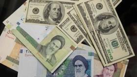 تزریق ۸ میلیارد دلار به بازار ثانویه/ صرافی ها مجاز به واردات ارز و طلا شدند