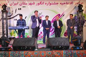 افتتاحیه جشنواره انگور تیران