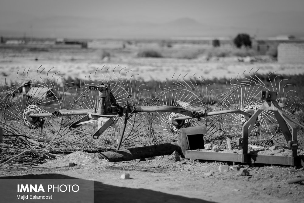 Farmers lost their jobs in drought-hit eastern Isfahan