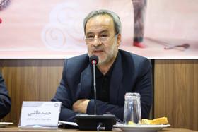 طالبی: قوانین مربوط به جانبازان مغفول مانده است