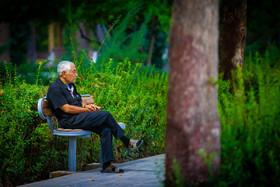 شبکههای اجتماعی راهی برای درمان افسردگی در سالمندان