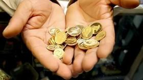 قیمت سکه ۳۲۰ هزار تومان افزایش یافت