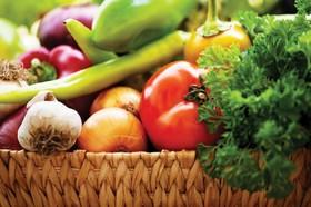 اصفهان و سه استان دیگر برای تولید محصولات ارگانیک انتخاب شدند